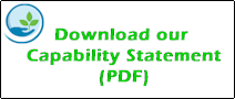 capability statement download